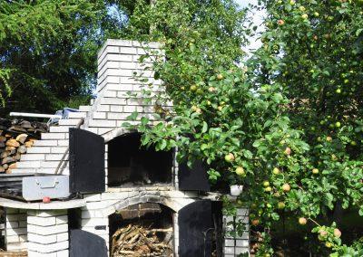 ogród 9